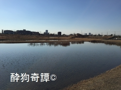 20150111_010[1]