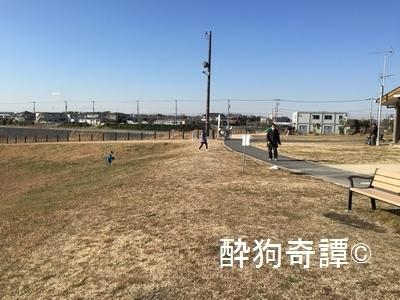 20150111_030[1]