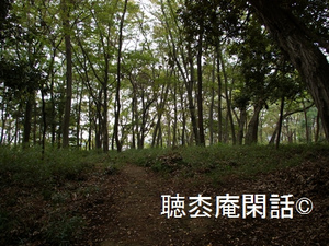 堀之内貝塚 - 市川の歴史・観光 Vol.03 -