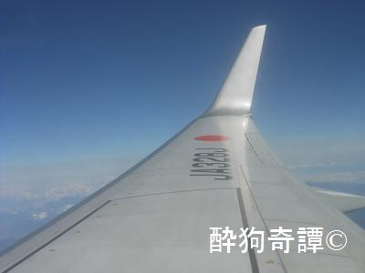 JAL JA328J