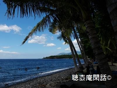 _digital_images_2009_05_12_imgp0153[1]