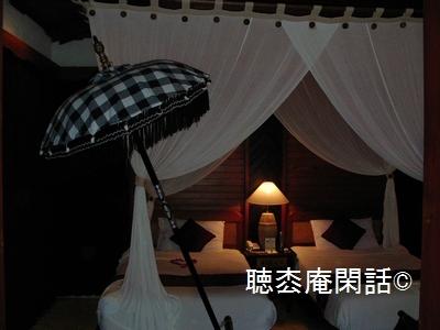 _digital_images_2009_12_11_20060818_507[1]