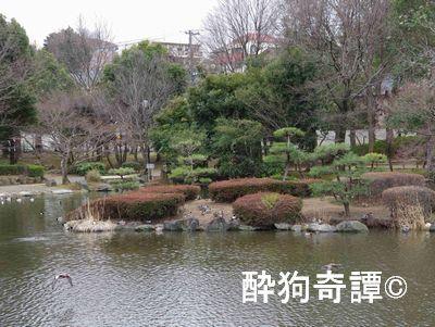 じゅんさい池緑地の梅林
