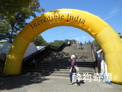 India festival 2013