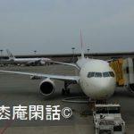 上海逍遥録(5) フライト