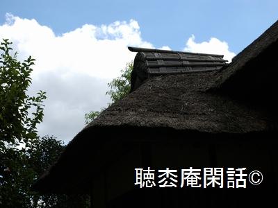 _digital_images_2011_10_16_imgp0024[1]
