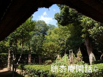 _digital_images_2011_10_16_imgp0061[1]
