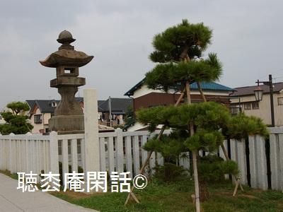 _digital_images_2011_11_19_imgp0173[1]