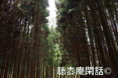 四時川渓谷