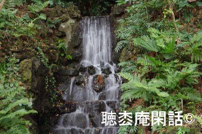 本土寺の紅葉(2012年)