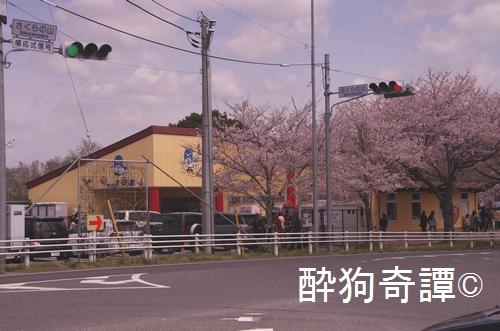 成田さくらの山公園