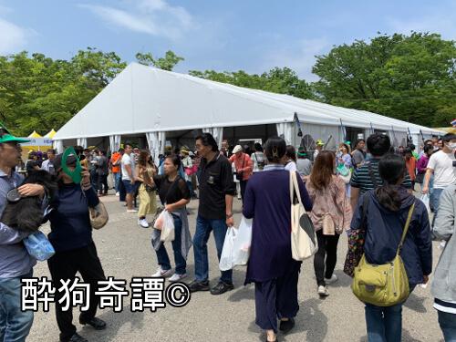 Thaifestival2019